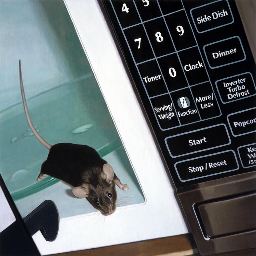 mouseinmicrowavezm